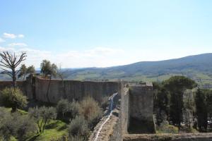 san_gimignano (18)