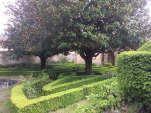 castello_bufalini (10)
