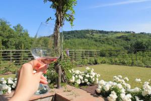 winesurfing (13)