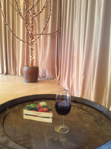 winesurfing (15)