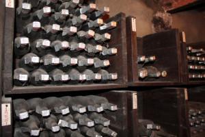 winesurfing (8)